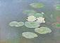 Claude Monet, Water Lilies: Evening | Water-lilies, evening effect | Nympheas, effect du soir, 1897-98 (W 1504) oil on canvas, 28.7 x 39.4 in. / 73 x 100 cm, US$350